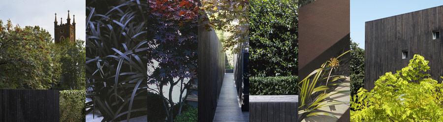 garden and landscape design